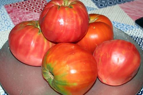 tomates-del-huerto
