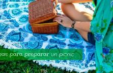 ideas-para-preparar-un-picnic-2