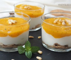 crema de yogur y mando receta-1