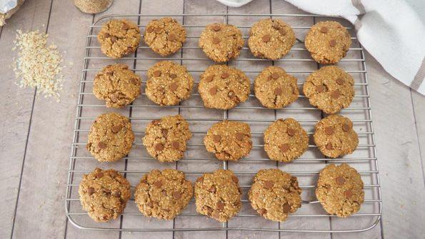 receta cookies de avena en monsieur cuisine plus